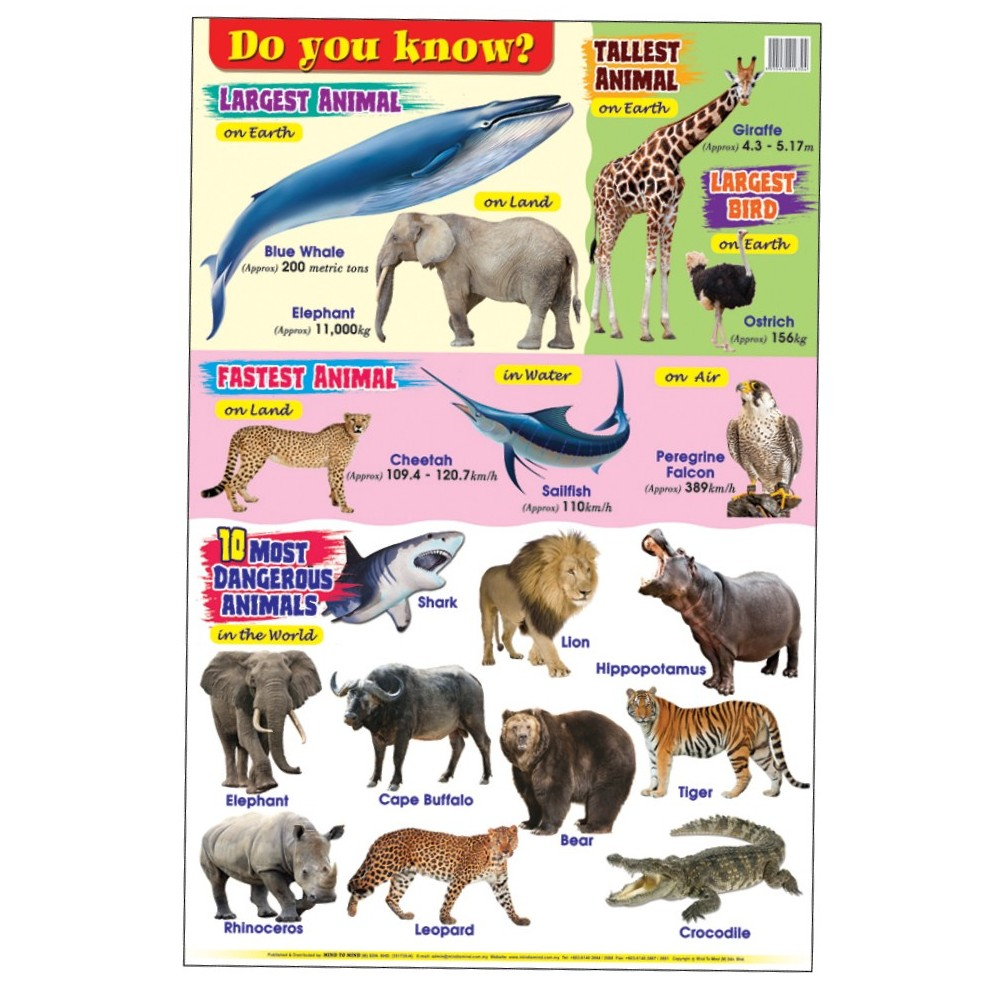 Educational Chart Do You Know (MM16304)