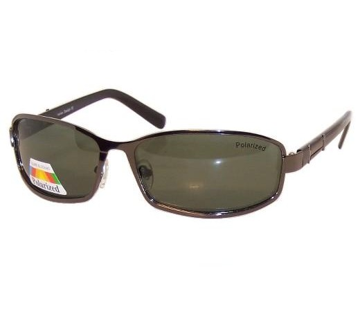 Guzzi Polarized Sunglasses PM6058